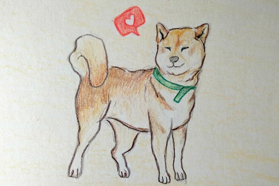 refran perro vagabundo japones