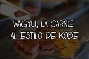 que es la carne wagyu