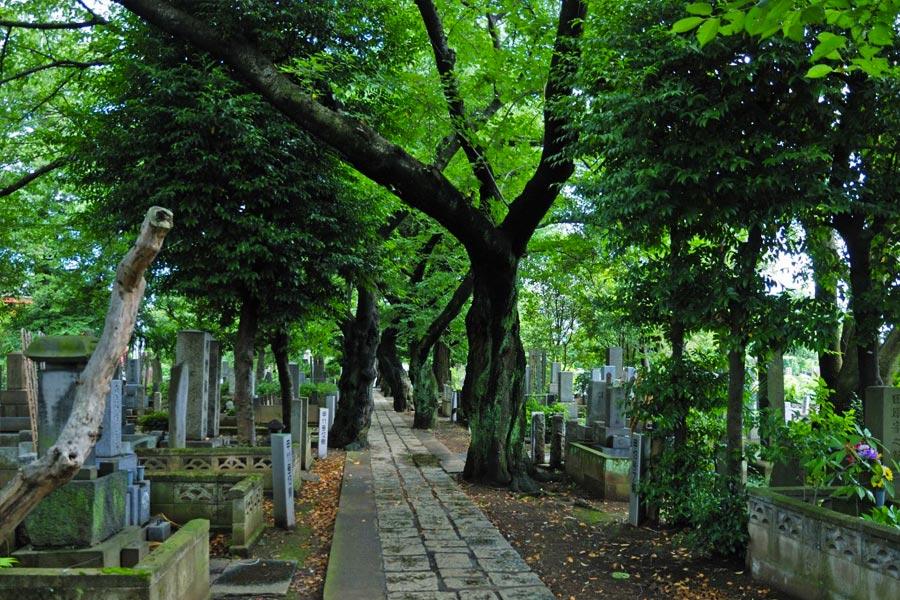 Cementerio Yanaka en Tokio