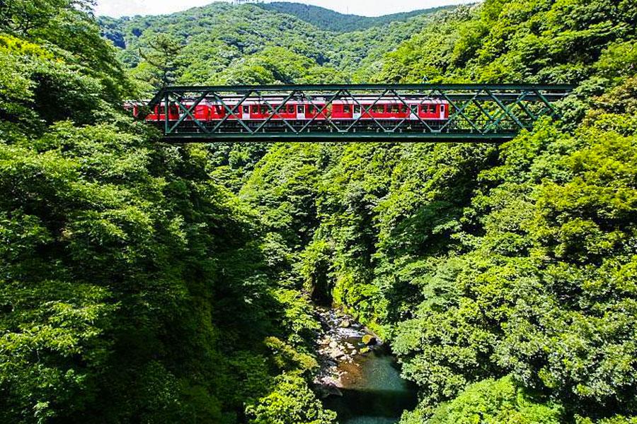 tren a Hakone