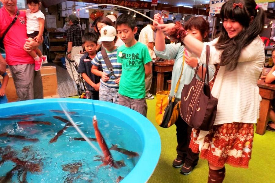 Pescando calamar